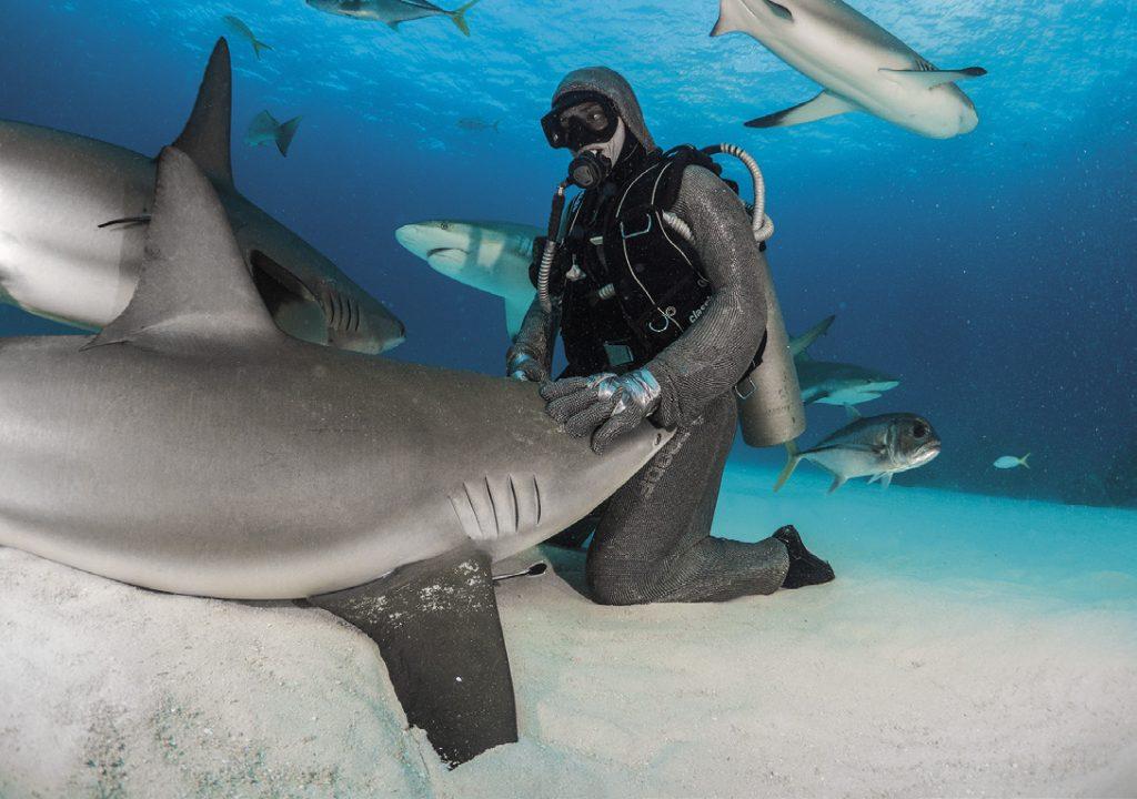 Nautica aprile 2018 Cristina Zenato la regina degli squali