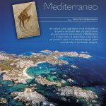 il futuro del mediterraneo nautica febbraio 2019
