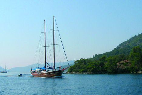Caicchi in Turchia