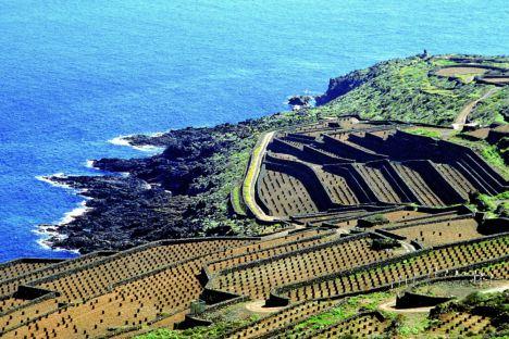 Pantelleria e Isole Pelagie
