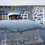 Pico, Museo Maritimo Costrucao Naval
