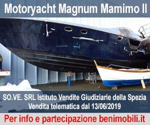Asta Magnum Mamimo II