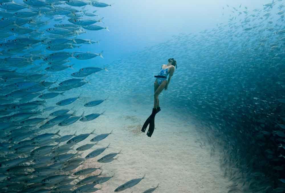Ocean film